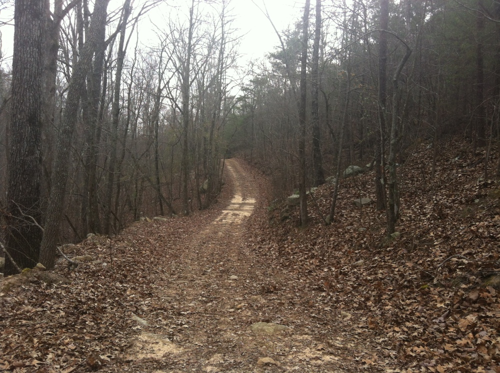 EBSCO trails ride report - March 9th 2013 (1/6)