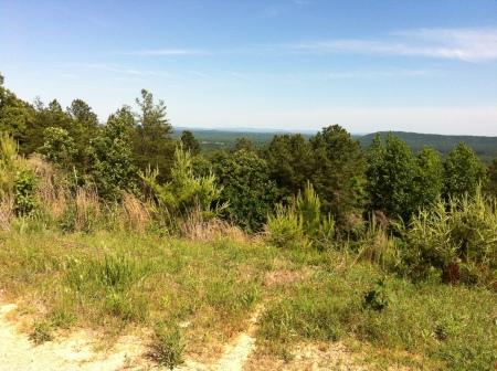 view at top of hwy 25