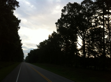 Sun peaking up on Hwy 41.