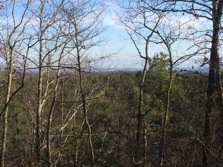 view towards childersburg