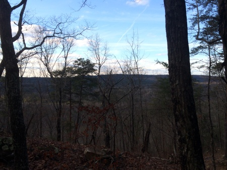 view from vantage point on new trail